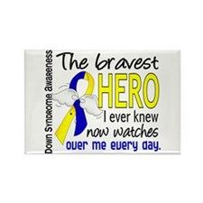 DS Bravest Hero Rectangle Magnet (10 pack)