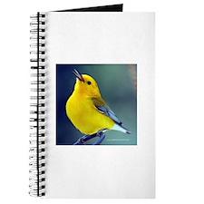 A Little Birdie Warbler Journal