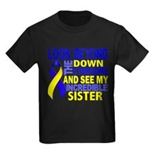 DS Look Beyond 2 Sister T