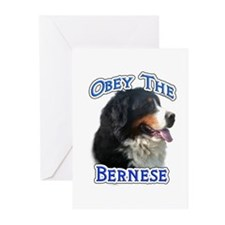 Bernese Obey Greeting Cards (Pk of 10)