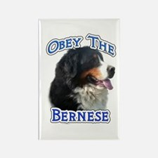 Bernese Obey Rectangle Magnet