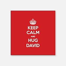 Hug David Sticker