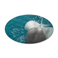 Baby Beluga (Delphinapterus  Decal Wall Sticker