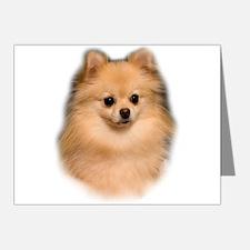 Pomeranian Portrait Note Cards