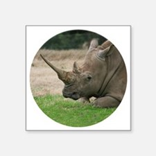 "Rhinoceros Photo with Huge  Square Sticker 3"" x 3"""