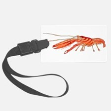 Pistol Snapping Shrimp c Luggage Tag