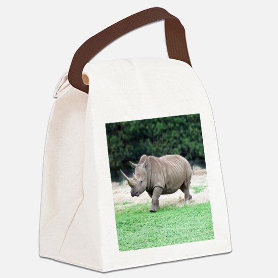 Rhinoceros with Huge Horn Canvas Lunch Bag