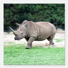 """Rhinoceros with Huge Hor Square Car Magnet 3"""" x 3"""""""