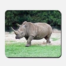 Rhinoceros with Huge Horn Mousepad