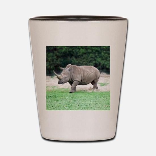 Rhinoceros with Huge Horn Shot Glass