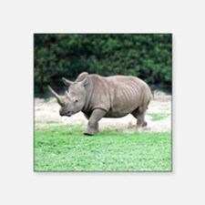 "Rhinoceros with Huge Horn Square Sticker 3"" x 3"""