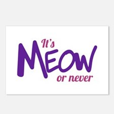 Its meow or never Postcards (Package of 8)