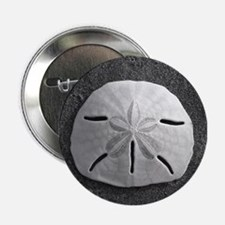 "Sand Dollar Seashell 2.25"" Button"