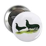 Black Sumatra Chickens Button