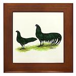 Black Sumatra Chickens Framed Tile
