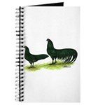 Black Sumatra Chickens Journal