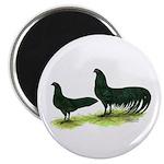 Black Sumatra Chickens Magnet