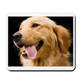Golden retriever Mouse Pads
