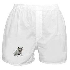 English Bulldog (W1) Boxer Shorts