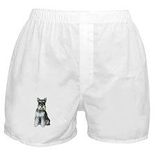 Schnauzer (gp2) Boxer Shorts