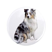 "Australian Shep (gp1) 3.5"" Button"