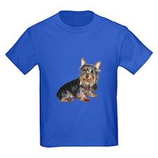 Silky Terrier (gp2) T