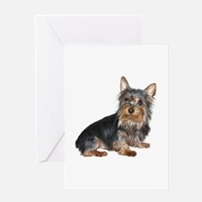 Silky Terrier (gp2) Greeting Card