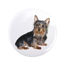 "Silky Terrier (gp2) 3.5"" Button"