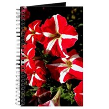 Candy Striped Petunias Journal