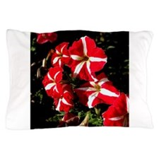 Candy Striped Petunias Pillow Case