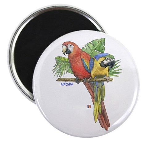 Tropical Macaws Magnet