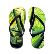 Papaya Tree Painting Hawaii Tropical Flip Flops
