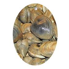 Clams Ornament (Oval)