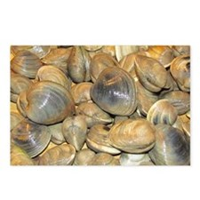 Clams Postcards (Package of 8)