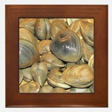 Clams Framed Tile