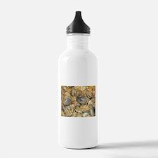 Clams Water Bottle