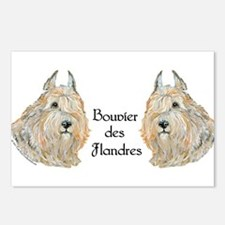 Bouvier des Flandres Postcards (Package of 8)