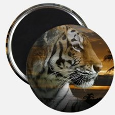 Tiger Sunset Magnets