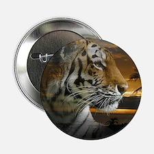 """Tiger Sunset 2.25"""" Button"""