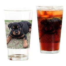 Rottweiler Puppy Drinking Glass