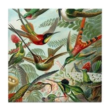 Beautiful Hummingbirds Art Tile Coaster