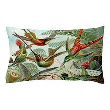 Beautiful Hummingbirds Art Pillow Case