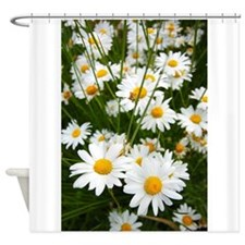 Meadow of daisies Shower Curtain