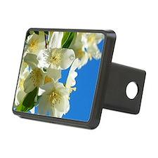 Jasmine flowers blossom  Hitch Cover