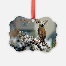 Robin in Cherry Tree Ornament