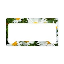 Summer daisies License Plate Holder