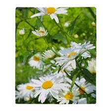 Beautiful daisies Throw Blanket