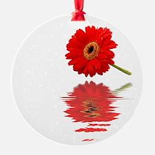 Red Daisy Ornament