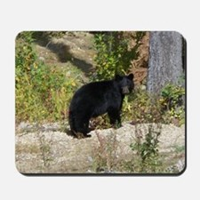 Autumn Bear Daze #2 Mousepad
