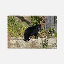 Autumn Bear Daze #2 Rectangle Magnet